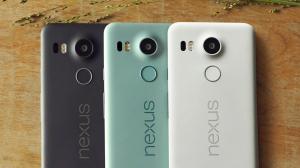 цвета LG Nexus 5X